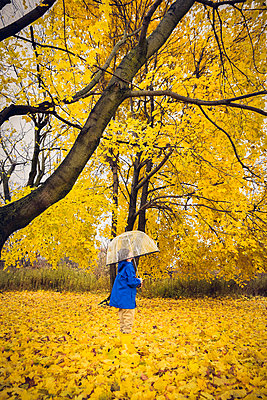 Young child in rain gear looking up through umbrella at golden leaves - p1166m2072140 by Cavan Images