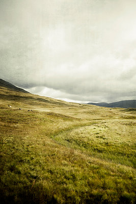 Rannoch Moor, Scotland, from train window - p597m1214944 by Tim Robinson
