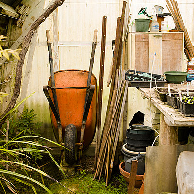 Wheelbarrow in greenhouse - p1201m1041725 by Paul Abbitt