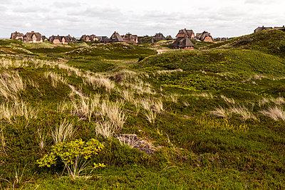 Häuser auf Sylt - p1271m1084027 von Maurice Kohl