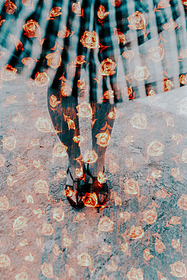 Multiple Exposure of Roses And Woman's Feet - p1417m1586520 by Jessica Lia