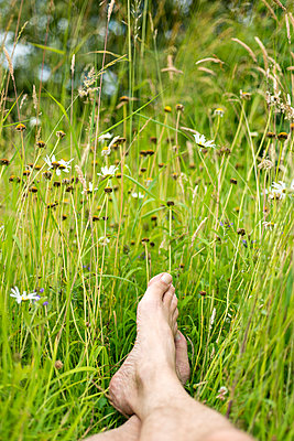 A man's bare feet and partial legs in a meadow - p1433m1582752 by Wolf Kettler