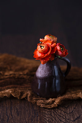 Persian buttercup in mini vase - p300m1562229 by Mandy Reschke