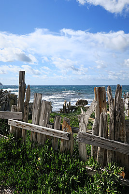 Old wooden fence on the waterfront - p930m1222012 by Phillip Gätz