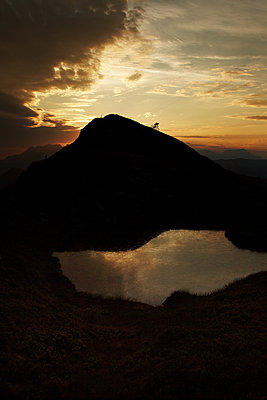 Mountain biker at sunset - p704m1476481 by Daniel Roos