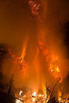 Germany, Forest fire in Heilbad Heiligenstadt - p300m2207361 by isderjens