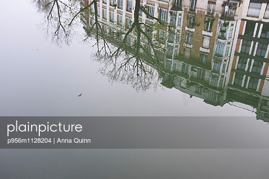 Houses, trees, and a bird reflecting in water - p956m1128204 by Anna Quinn