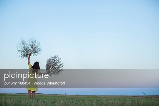 p343m1168494 von Woods Wheatcroft