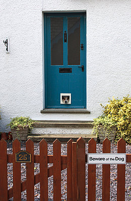 Beware of the dog - p1121m931999 by Gail Symes