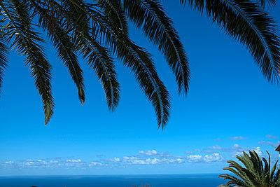 Sky over La Palma - p427m2148374 by Ralf Mohr