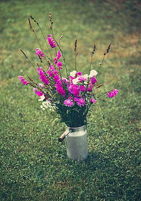 Flowers in can - p970m2073353 by KATYA EVDOKIMOVA