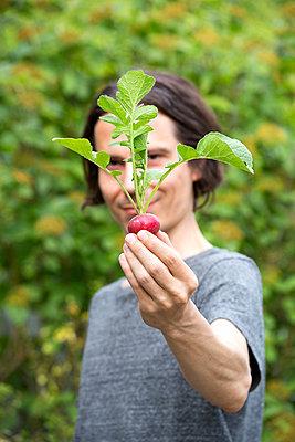 Gardener holding organic red radish - p300m2103439 von Nabiha Dahhan