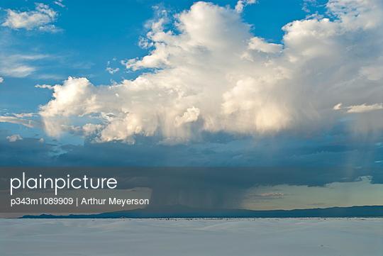 p343m1089909 von Arthur Meyerson