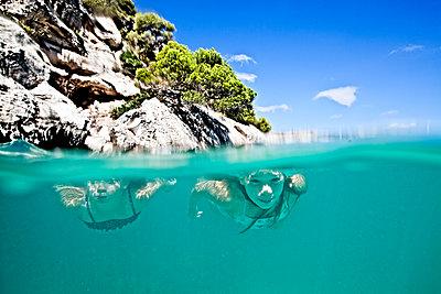 Mädchen schwimmen unter Wasser - p713m2087615 von Florian Kresse