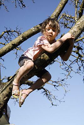 Mädchen auf einem Baum - p8670183 von Thomas Degen