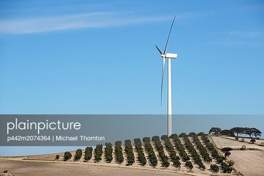 p442m2074364 von Michael Thornton