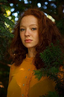 Im Tannenbaum verstecken - p045m1184812 von Jasmin Sander