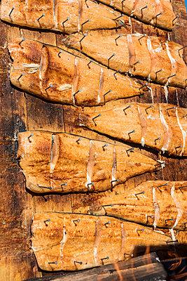 Getrockneter Fisch - p1241m2100367 von Topi Ylä-Mononen