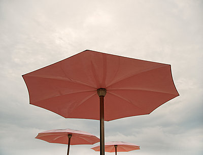 The Pink Umbrellas - p1335m1171610 by Daniel Cullen