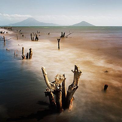 Momotombo, Vulkan, Nicaragua - p844m880798 von Markus Renner