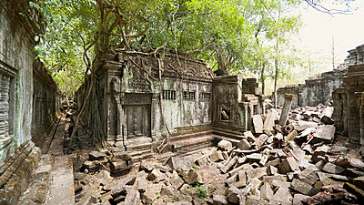 Ta Prohm Temple - p871m757419 by Andrew Stewart