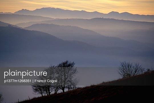 p1377m1268351 von Franco Cogoli