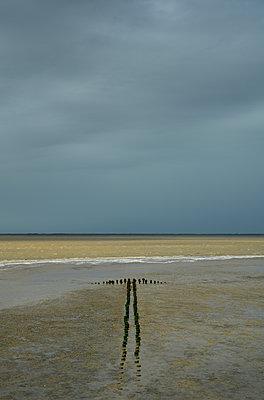 Groynes on the waterfront - p1132m2126188 by Mischa Keijser