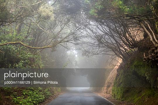 p300m1166129 von Simona Pillola