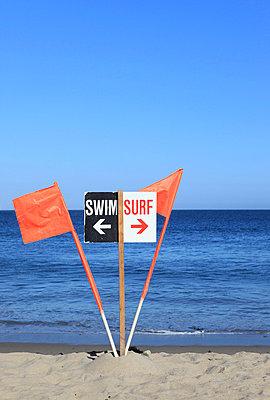 Swim or surf - p0452829 by Jasmin Sander