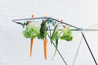Clotheshorse with vegetables - p1621m2281280 by Anke Doerschlen