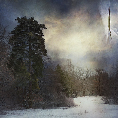 Winter Vision - p1633m2210006 by Bernd Webler