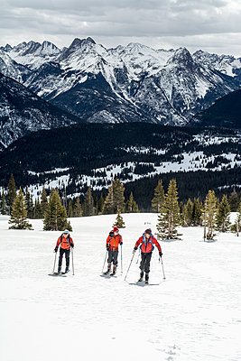 A group of backcountry skiers in the San Juan National Forest, Silverton, Colorado. - p343m1184471 by Kennan Harvey