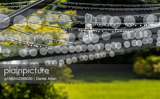 Clothes peg in the rain, lens flare - p1082m2288030 by Daniel Allan