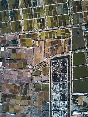 Aerial view of salt lakes and shrimp farm - p1166m2094500 by Cavan Images