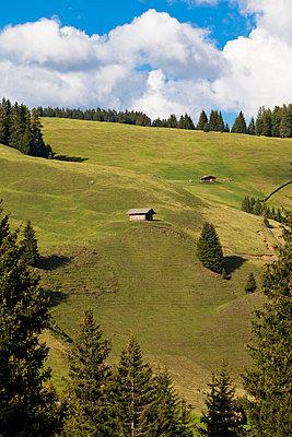 Austria - p4880505 by Bias