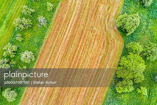 Germany, Baden-Wuerttemberg, Rems-Murr-Kreis, field - p300m1587551 von Stefan Schurr