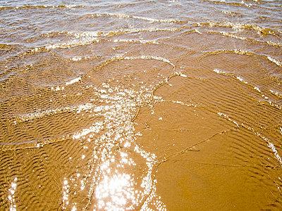 Beach - p3226269 by plainpicture