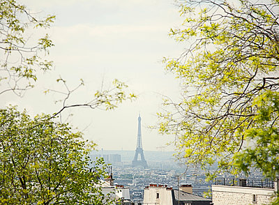 Paris skyline with Eiffel Tower - p429m1450405 by Seb Oliver