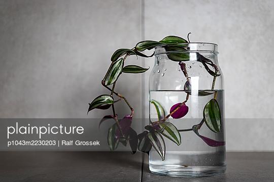 to Himself - p1043m2230203 by Ralf Grossek