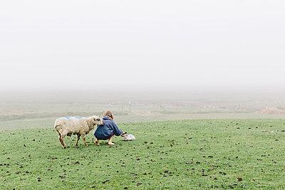 Mädchen und Schafe - p1085m876967 von David Carreno Hansen