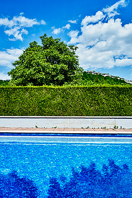 Pool with hedge and tree, Village in background - p1312m2178211 by Axel Killian