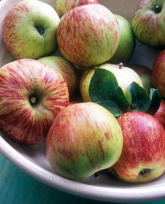 Schale mit Äpfeln - p3050115 von Dirk Morla
