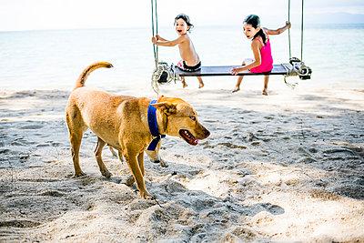 Kinder auf einer Schaukel am Strand - p680m1515283 von Stella Mai