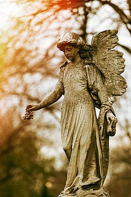 Guardian angel - p081m1143445 by Alexander Keller