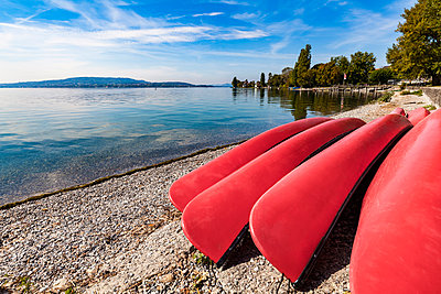 Germany, Constance district, Reichenau Island, lakeshore with Canadian caes - p300m1587410 by Werner Dieterich