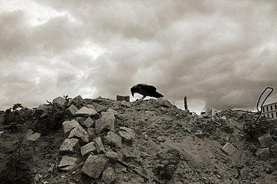 Ruins - p1710334 by Rolau