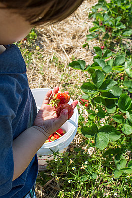 Strawberry - p535m916470 by Michelle Gibson