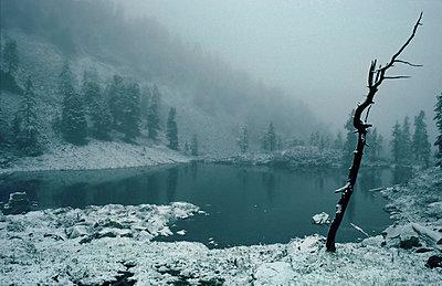 Kleiner See in den Salzburger Alpen - p9791694 von Schickhofer