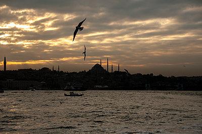 Istanbul Bosphorus - p1691m2288571 by Roberto Berdini Bokeh
