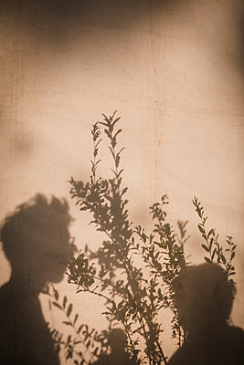 Vegetal and human shadows - p1150m2014714 by Elise Ortiou Campion